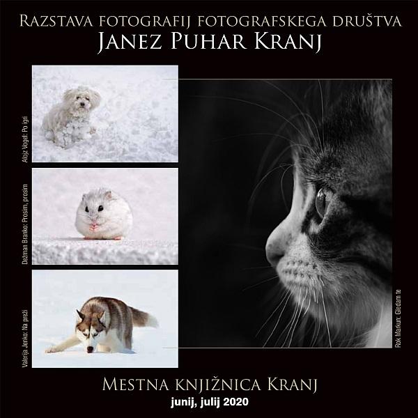Razstava fotografij fotografskega društva Janez Puhar Kranj - Mestna knjižnica Kranj, junij, julij 2020